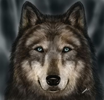 Wolf Painting by RAM by robertmarzullo