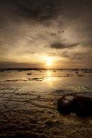Sun on the Reef by MarkLucey