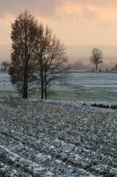 Snowy Fields 5080464 by StockProject1
