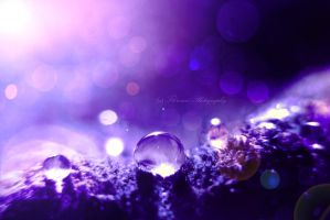 Land of tears by Floreina-Photography