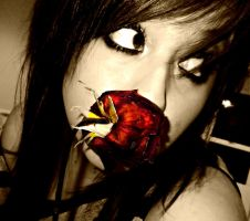 Dead Roses and New Hair SEPIA by ibledonthedancefloor