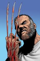Old Man Logan by Steve McNiven by mentat0209