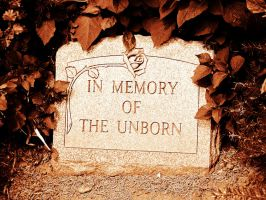 In Memory Of The Unborn by NostalgiaPhotos