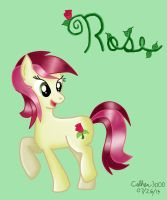 Rose by Colhan3000