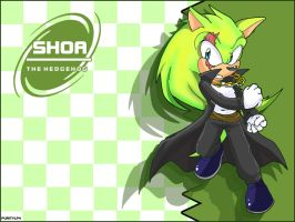 Shoa the hedgehog background by Ryoten