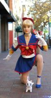 Super Sleuths- Codename Sailor V and Artemis by jobiberry