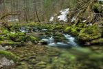 Easter Creek Background by Burtn