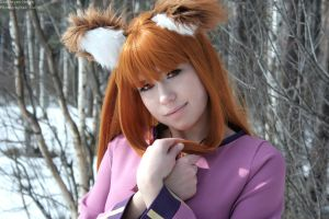 Horo The Wise by Helgakn
