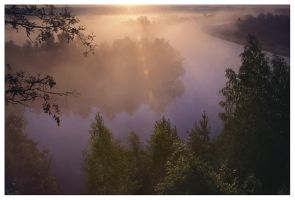 River in fog by MartinDay