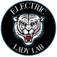 Electric Lady Lab Tiger by phoebus-chango