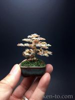 3-color contored wire bonsai tree by Ken To by KenToArt