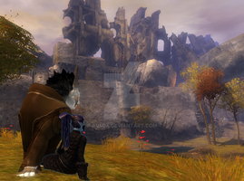 [Guild Wars 2] Looking into the Distance by ScarSparrow