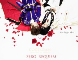 ZERO REQUIEM by Hayate1205