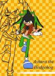 Ashura the Hedgehog by LobaWolf