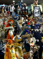 Biggest Little Furry Collage by MikeFolf