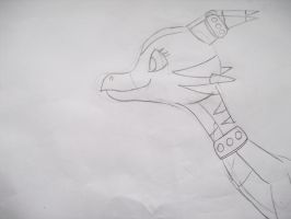 my own dragon design 2 by Princess-Shannen