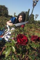 Alice Madness Returns Cosplay PaintingTheRosesRed by LiryoVioleta