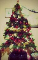 xmas tree by lalliphotography