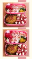Octo bento meal by contessavanessa