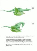 How Skyrim dragons wrote by ookaookaooka
