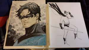 Nightwing by Tony S Daniel and Robin by M.Takara by Dkalban