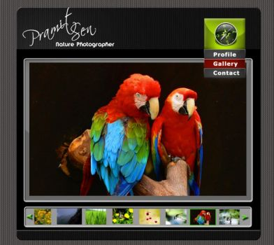 GUI for photographer website 0 by gopalb