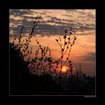 One Square with a Sunrise by rici66