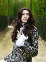 Louis XIV - 6 by Amilmand
