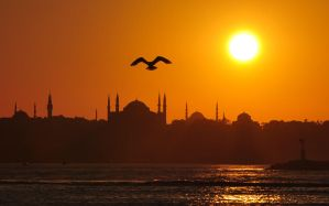 Istanbul Under My Wings by vabserk