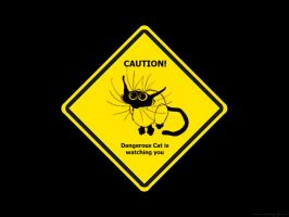 Caution by Laudano