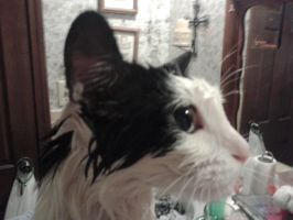 Ghosty Face getting towel dried #2 by PiccoloFreakNamick