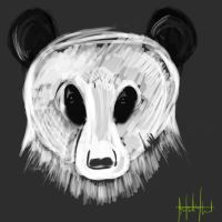 Panda Speed Paint by CMA3D
