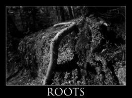 Roots by mep92