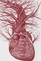Upper branches of heart by KamilaM94