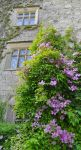 Levens Hall 108 by Forestina-Fotos