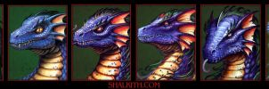 Blue Dragon Age Progression by VegasMike