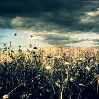 Yearning by Gregoria