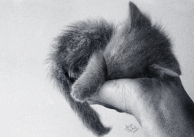 furry ball in your hands by Loomin-Locke