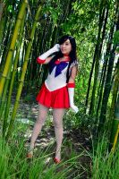 Sailor Mars :: Full Flame by Kimikotan