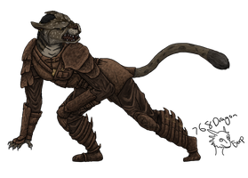Skyrim Khajiit by 768dragon