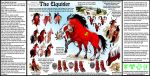 Elquider Breed Sheet Vers 1 by ghost-eye