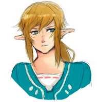 Sketch44: Zelda U by smilesandbruises
