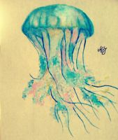 Jellyfish by MelissaJa