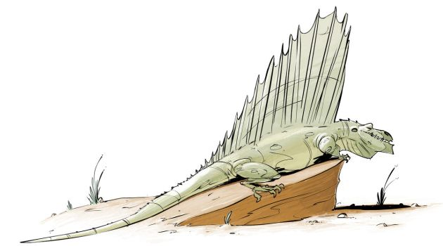Another Dimetrodon by okavango