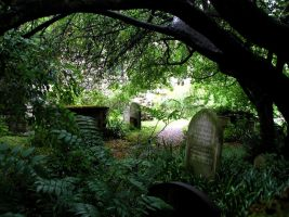 Cemetery in Cambridge by hecestmoi