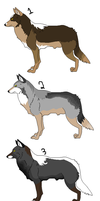 Coyote Adopts by runecoon