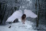 Winter Angel by Nightt-Angell