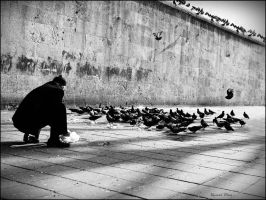 Feeding the pigeons by TuRKoo