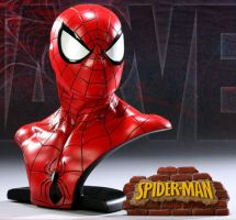 Spidey final with plaque by loqura