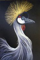 Crowned Crane Profile by HouseofChabrier